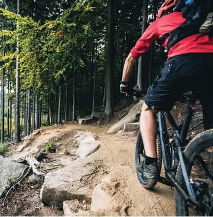 mountain-bike-piacenza