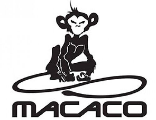 Corso base di arrampicata sportiva- Macaco