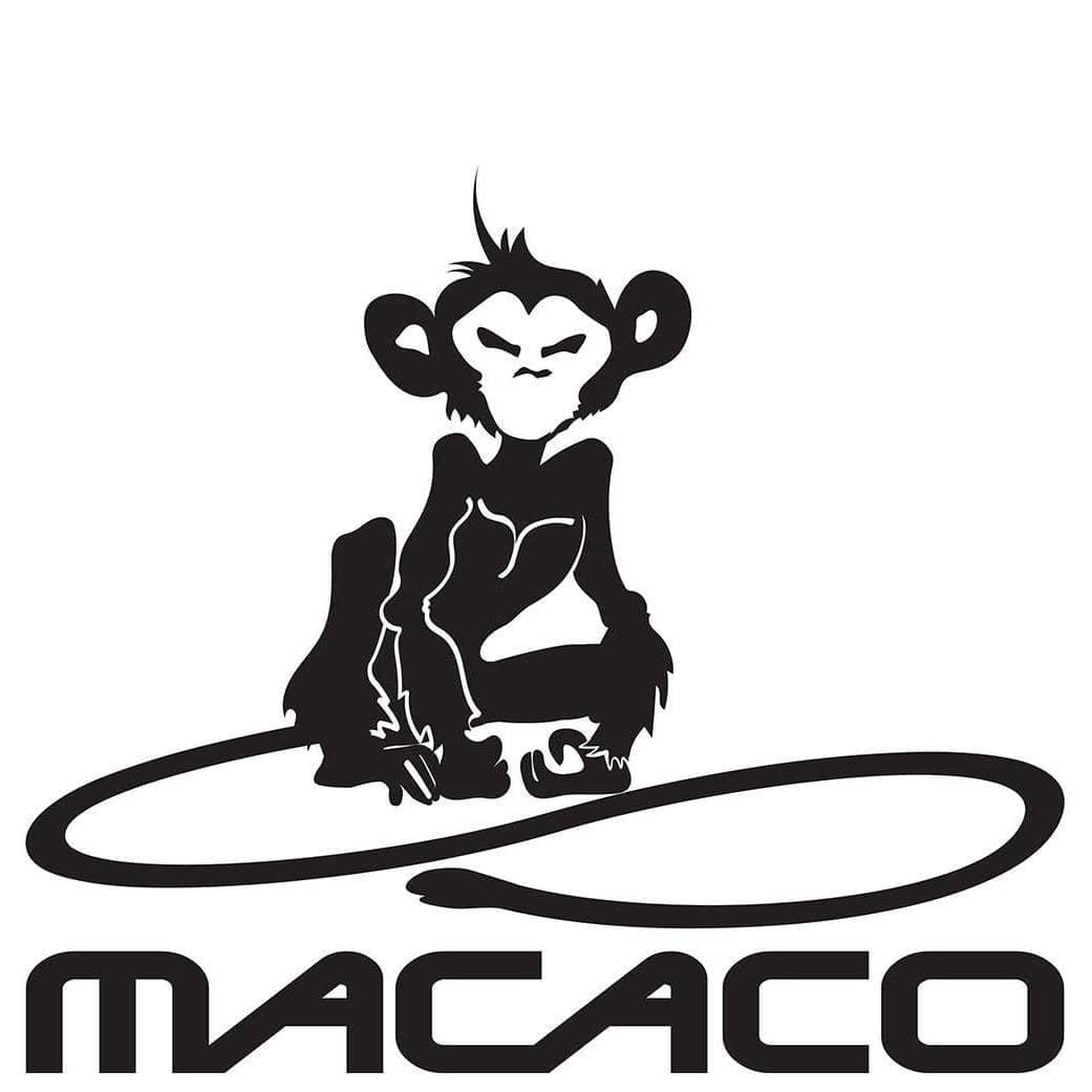 macaco climbing gym
