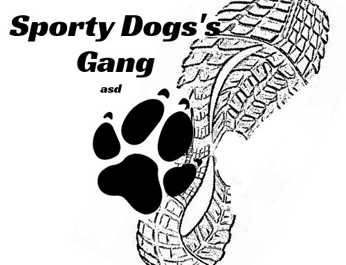Sporty Dogs Gang